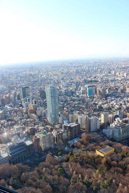 Tokyo11